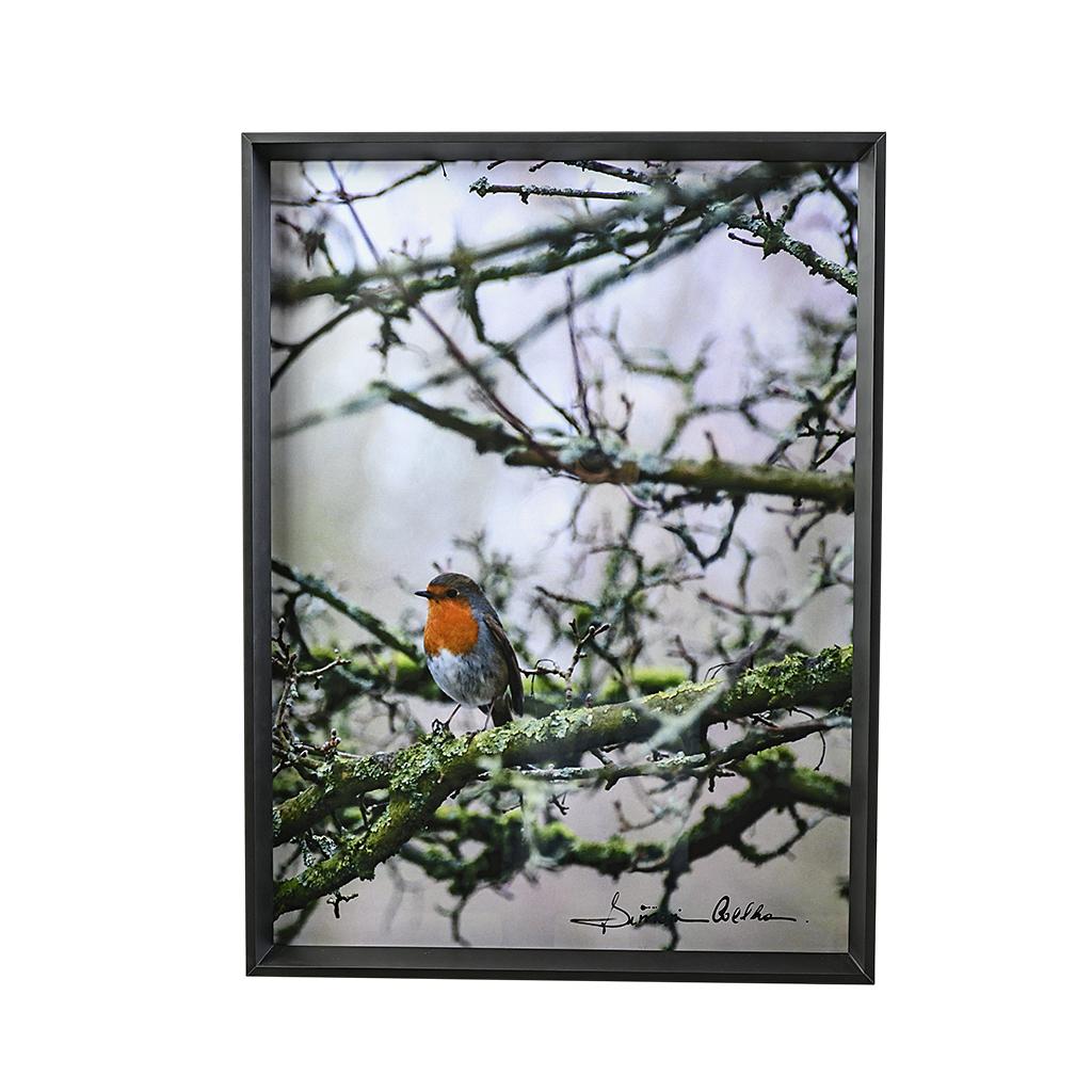 Quadro galhos com pássaro