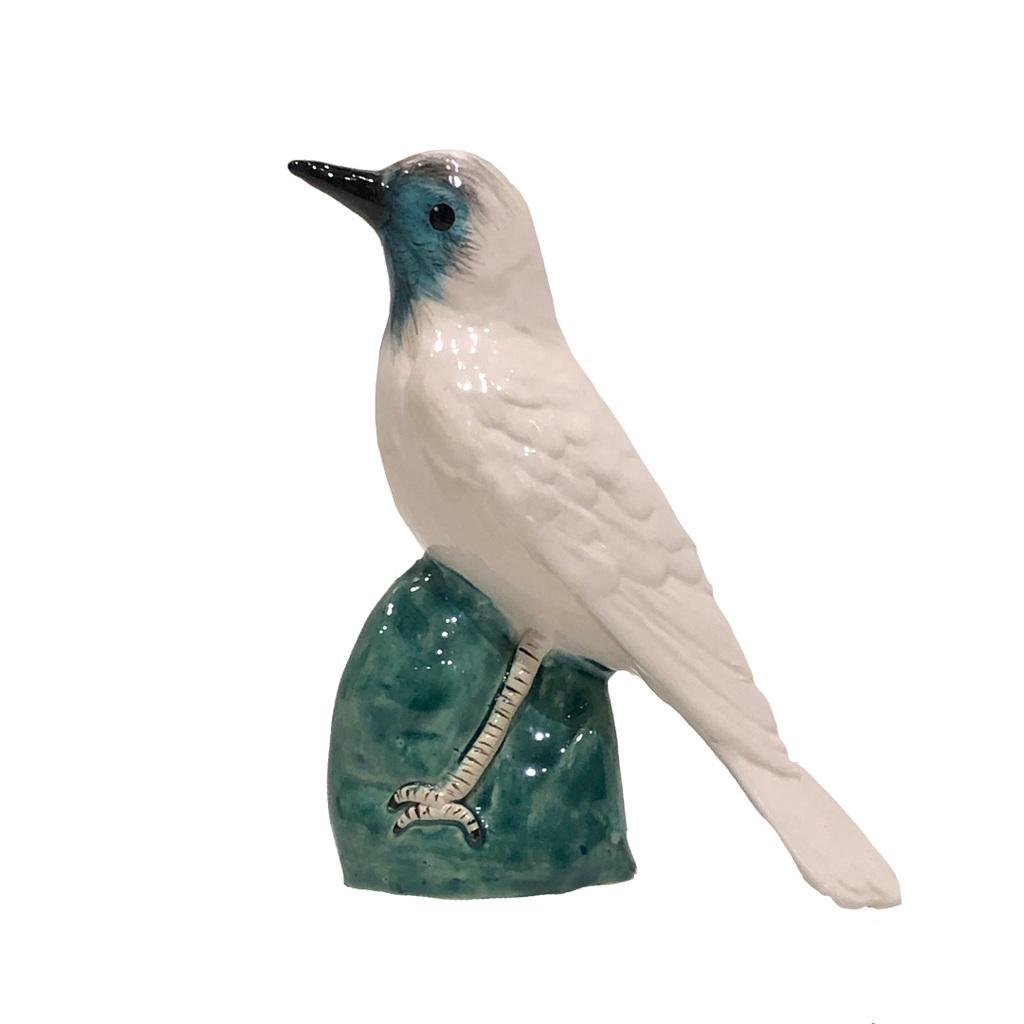 Araponga de porcelana